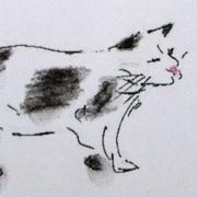 black & white cat - soft pastel