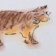 tabby cat - soft pastel