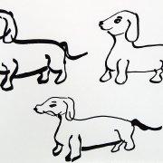 Sausage dogs 1
