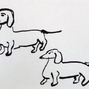 Sausage dogs 2