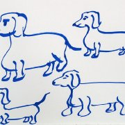 Sausage dogs 3