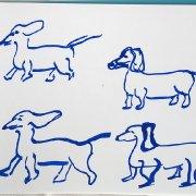 Sausage dogs 4