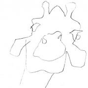 Giraffe\'s head